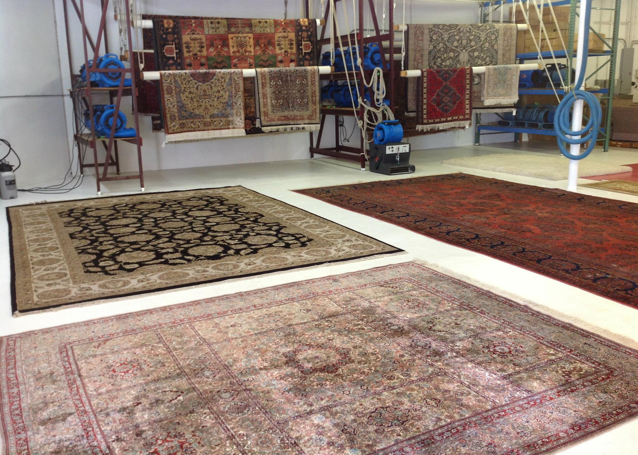 Area Rug Cleaning Jpeg Quality 100 3015072922390